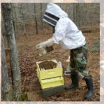 Installing new hive